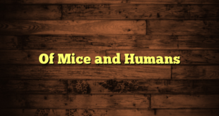 Of Mice and Humans